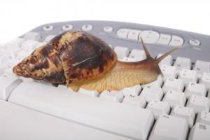 Snail on Keyboard